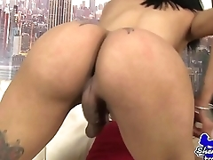 Bigtits ts tugging on swollen dong
